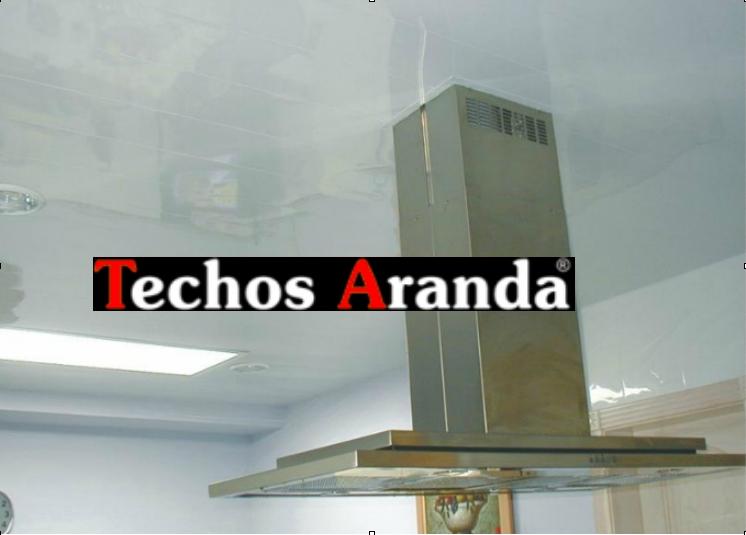 Techos Zaragoza magnolia
